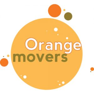 Orange Movers Miami LOGO 500x500 JPEG.jpg