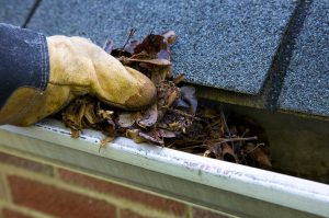 Irving-Rain-Gutters-Gutter-Cleaning-1.jpg