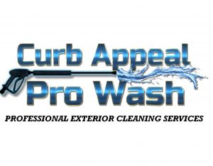 Curb Appeal Pro Wash.jpg