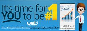 Best Search Engine Optimization In Delhi.jpg