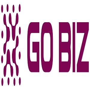 Gobiz Hi Res.png
