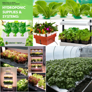 Hydroponic Supplies & Systems.png
