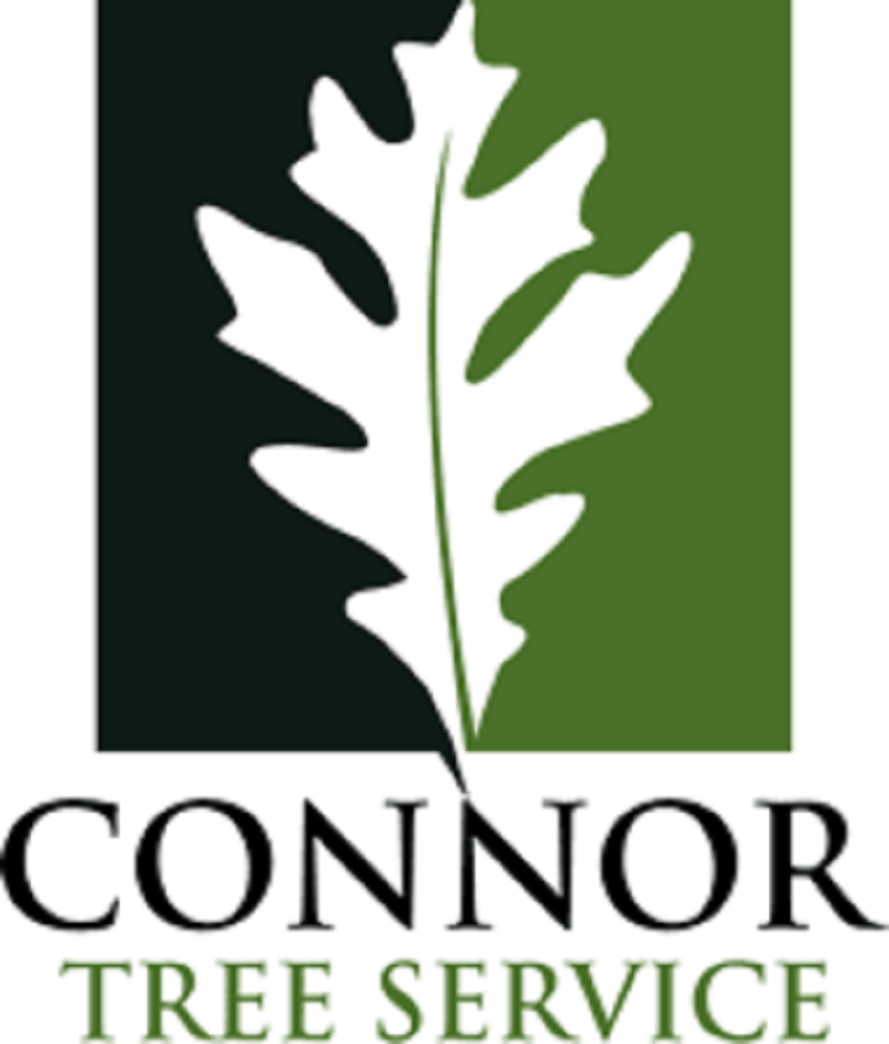 connorlogo@1x-1.png