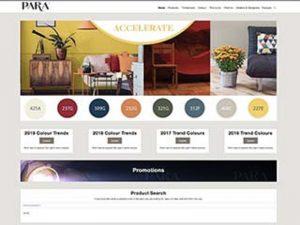 Para-Paint-web-design.jpg