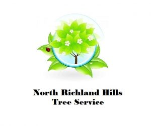 North Richland Hills Tree Service.jpg