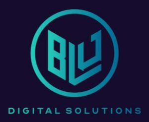 Blu Digital Solutions.JPG