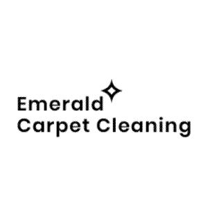 emerald-logo-black-new-LARGE-300×300